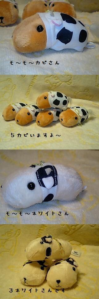 ちこちゃん日記19★カピバラ丼??★-7