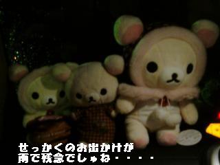 ちこちゃん日記21★ピカピカ綺麗でしゅね★-1