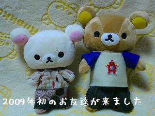 ちこちゃん日記26★2009年初お友達★-1