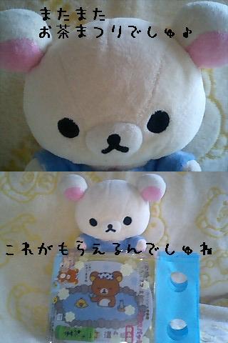 ちこちゃん日記30★またまたお茶祭りでしゅ★-1
