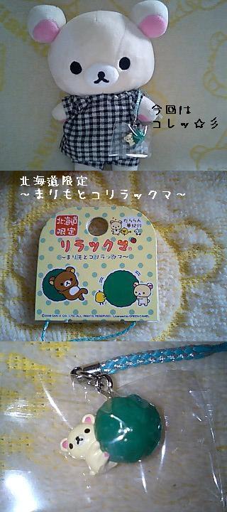 北海道限定~まりもとコリラックマ~-3