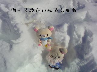 ちこちゃん日記特別編★雪って冷たいね★-2