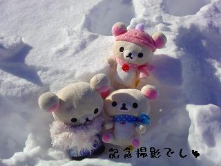 ちこちゃん日記特別編★雪って冷たいね★-3