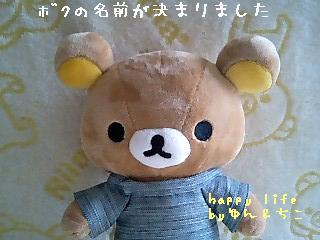 ちこちゃん日記特別編★名前が決まりました★-1