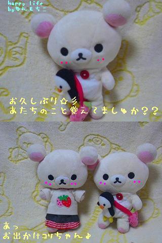 ちこちゃん日記★特別編★チョコレートでしゅか??-1