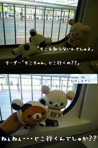 ちこちゃん日記★特別編★どこに行くのかな~??-3