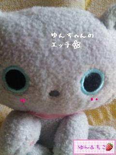 ちこちゃん日記51★ちこのペット★-3