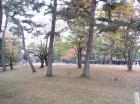 01興福寺