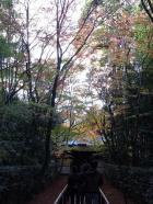 14高桐院