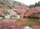 13醍醐寺