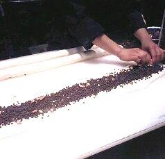 チョコリング2