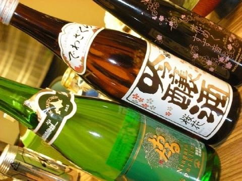 2011年2月26日薬師温泉オフ会(内湯編)5
