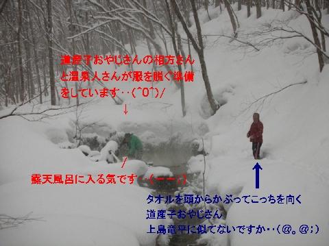 2011年2月 薬師温泉露天風呂9