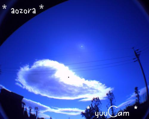 081130fisheyesora_convert_20081130185911.jpg