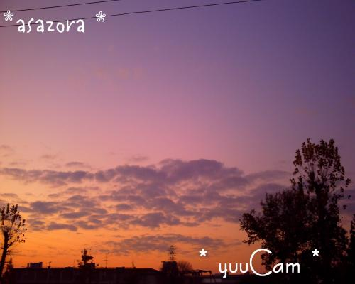 081203aszora_convert_20081203200928.jpg