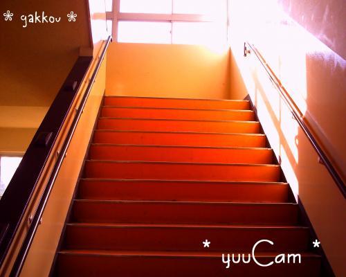 081211gakkou2_convert_20081214193420.jpg