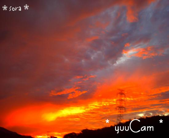 090823wakayama02_convert_20090825170709.jpg