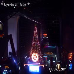 kyoutost+tree01_convert_20081125221400.jpg