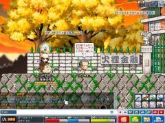 Maple100325_141714.jpg