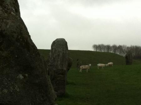 sheepstone.jpg