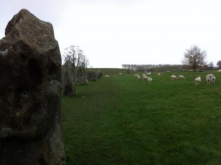 sheepstone1.jpg
