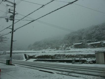 雪-風景2