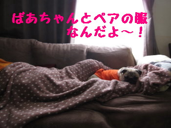 IMG_0149_1.jpg