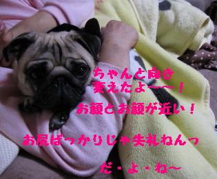 IMG_0163_1.jpg
