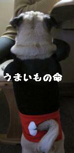IMG_0171_1.jpg