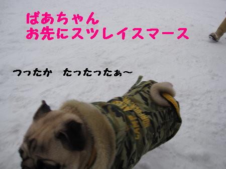 IMG_0392_1.jpg