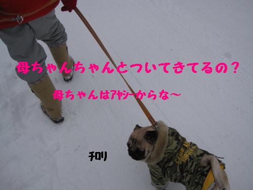 IMG_0394_1.jpg