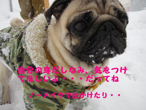 IMG_0454_1.jpg