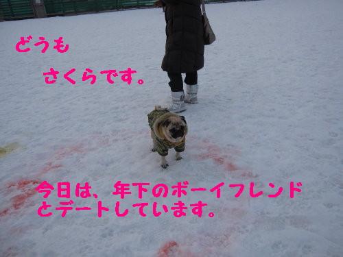 IMG_0498_2.jpg