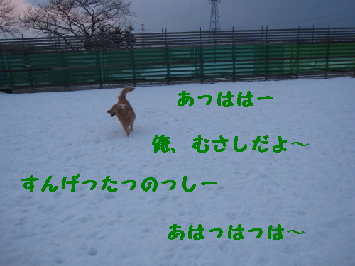 IMG_0507_1.jpg