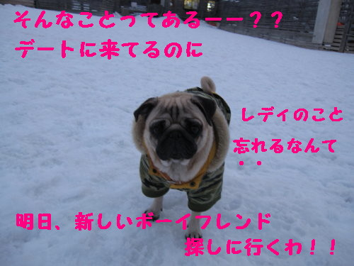 IMG_0514_1.jpg