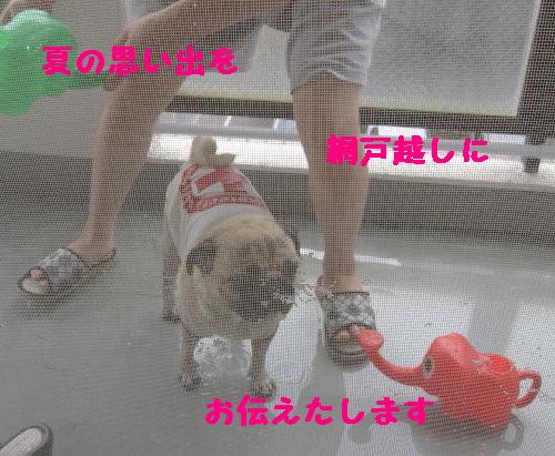IMG_0878_1.jpg