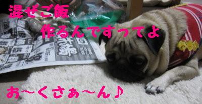 IMG_1005_1.jpg