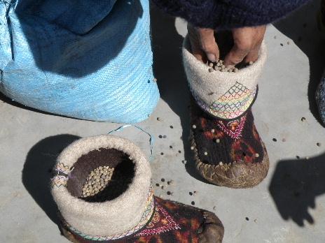 HS豆で靴を整える