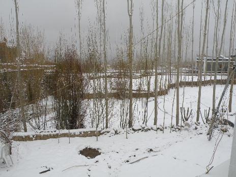 snow 06APR