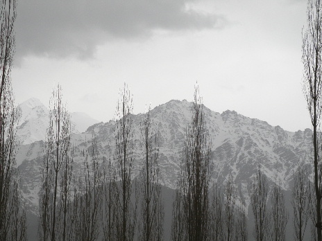 From Holiday Ladakh