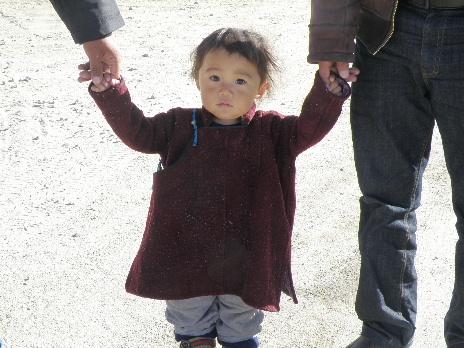 Karmapa1_20110425145151.jpg