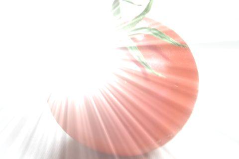 20120406195737e1a.jpg