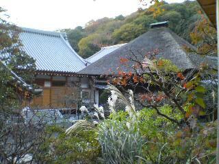 円覚寺時宗