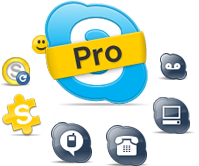 products_skypepro.png
