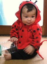 2005_0410sunny0010.jpg
