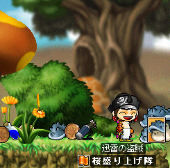 maplestory021_20090216233146.png