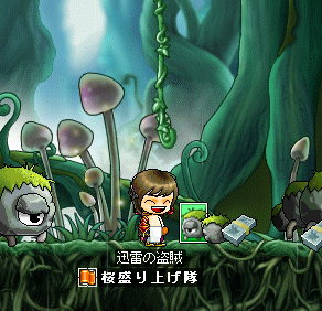 maplestory051_20090303220054.png