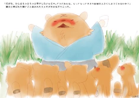 タヌキ財団4