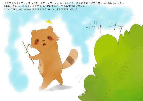 タヌキ財団13