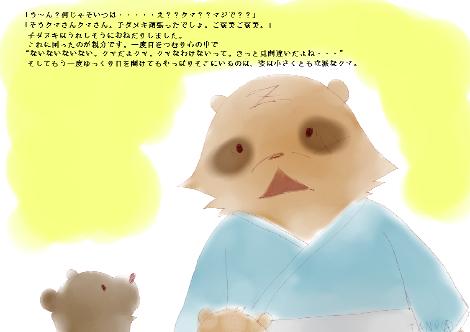 タヌキ財団20